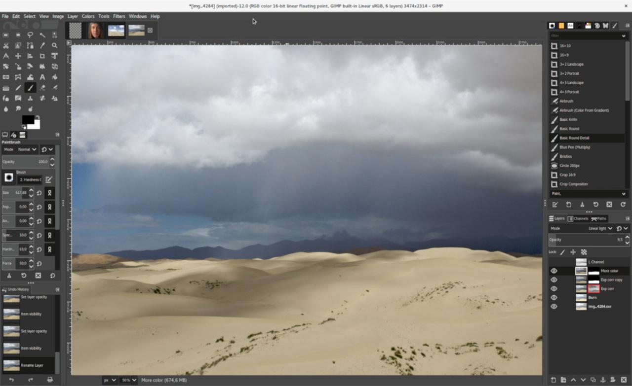 Cosa puoi fare con GIMP?
